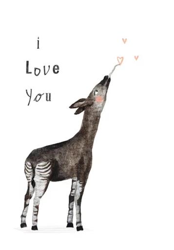 I love you – Studiopie