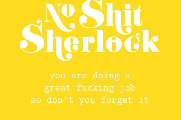 No shit Sherlock – Studio Inktvis