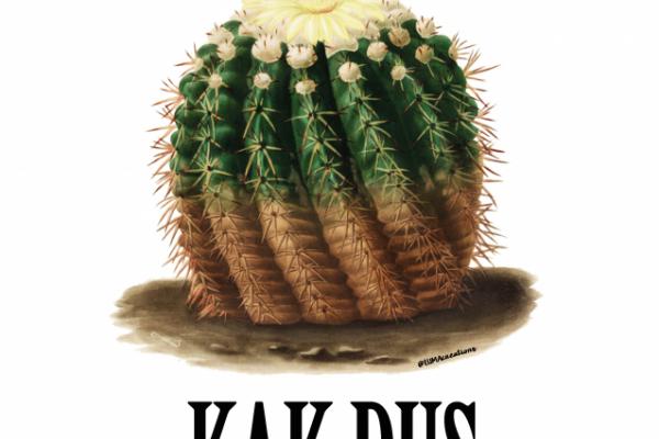 KAK, jaartje ouder – Studio Inktvis