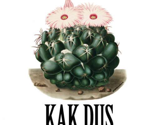 KAK, sterkte – Studio Inktvis