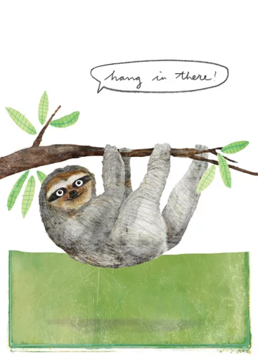 Hang in there – Studiopie