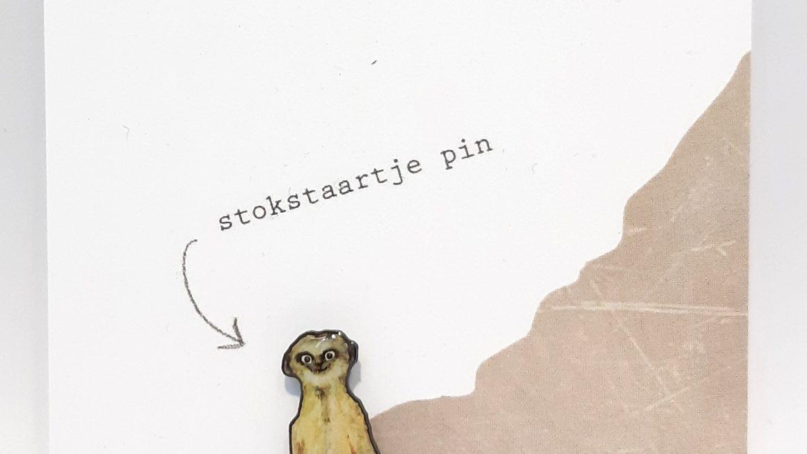 Pin Stokstaartje – Studiopie