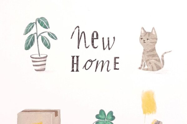 New home – Studiopie